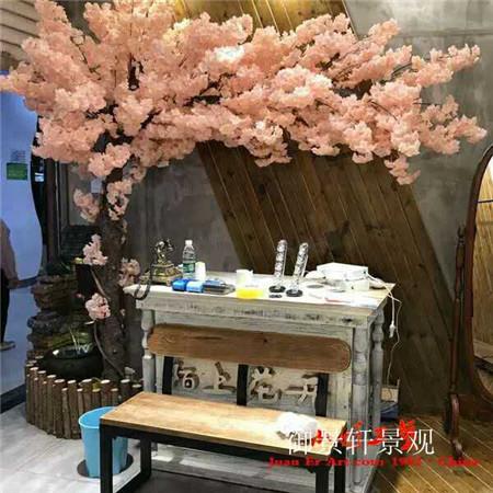 大型樱花树