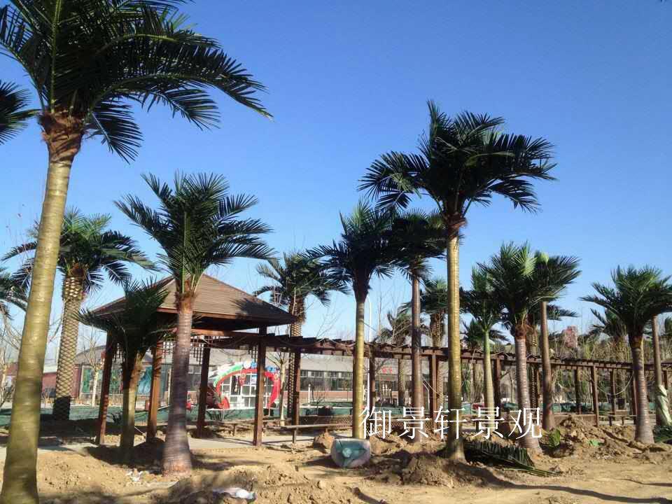 仿真大型椰子树