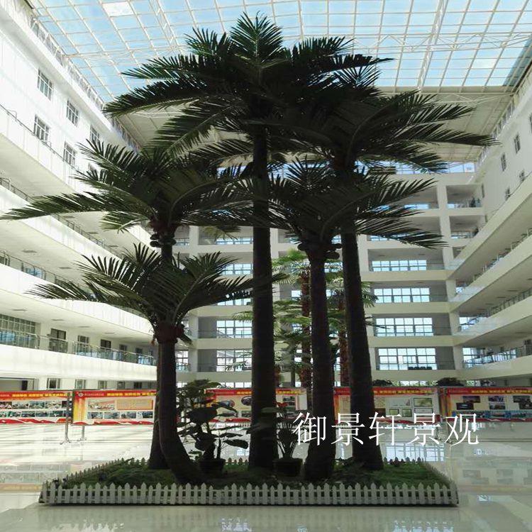室内景观椰子树