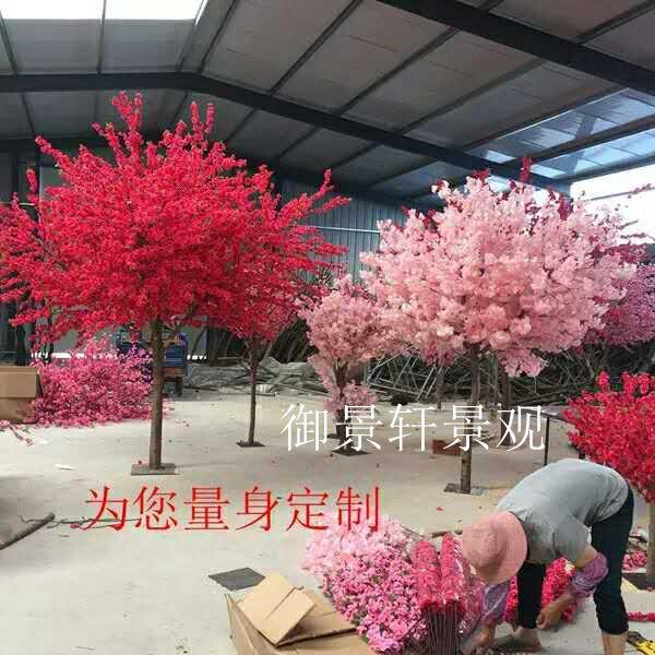 景观樱花树