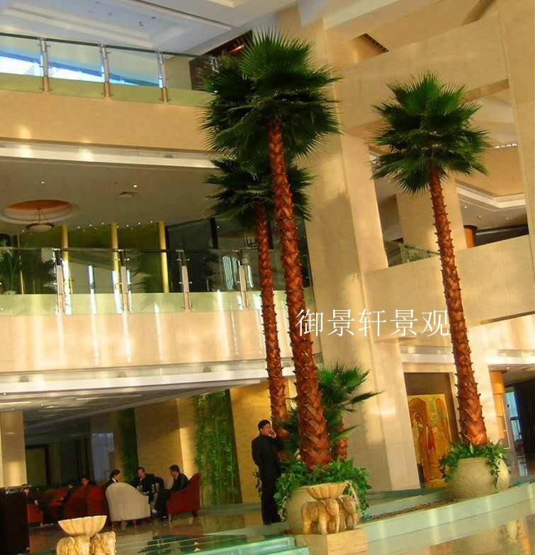 大型棕榈树
