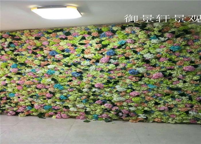 绿植墙产品案例展示