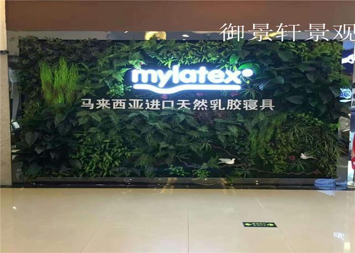 商场绿植墙