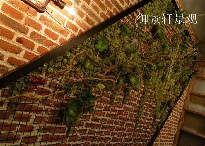 店内绿植墙