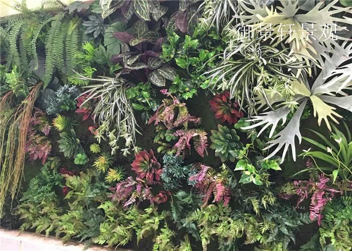 餐厅绿植墙