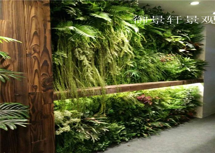 室内大型绿植墙