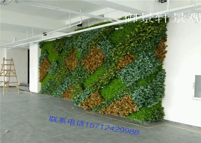 室内展厅区绿植墙