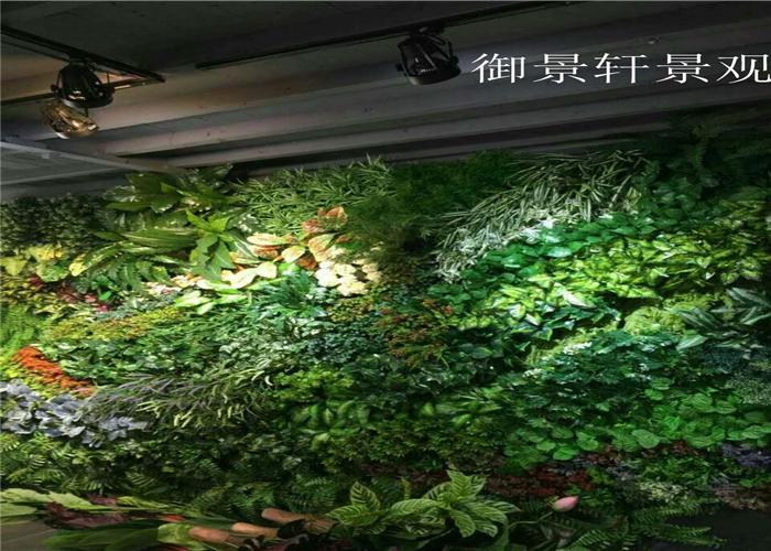 墙壁绿植墙