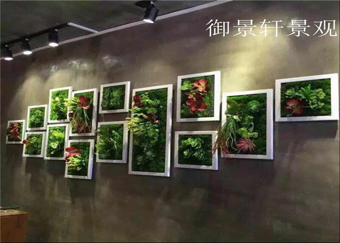 展览绿植墙