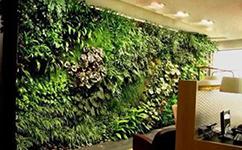 沈阳仿真绿植墙