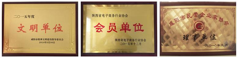 咸阳知名网络公司【云翼推】获得的荣誉证书