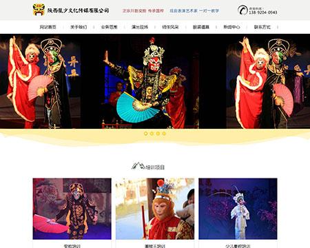陕西龍少文化传媒有限公司