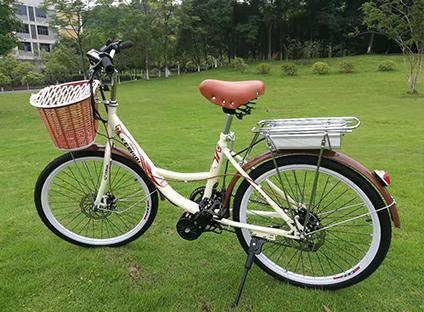 重庆电动助力自行车