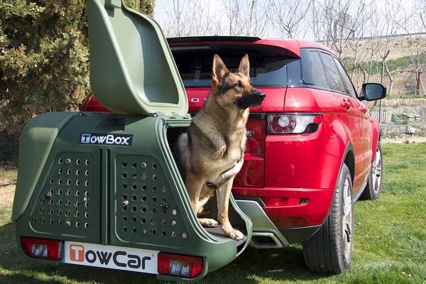 車用寵物箱