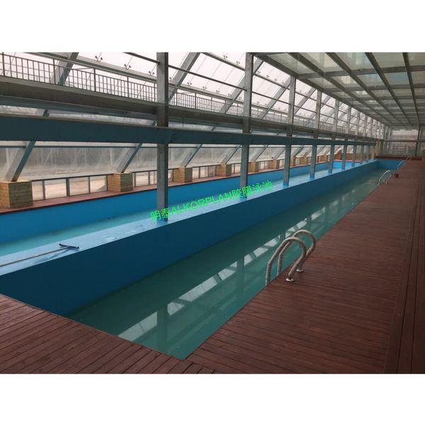 临潼西优农业研究所游泳池建设