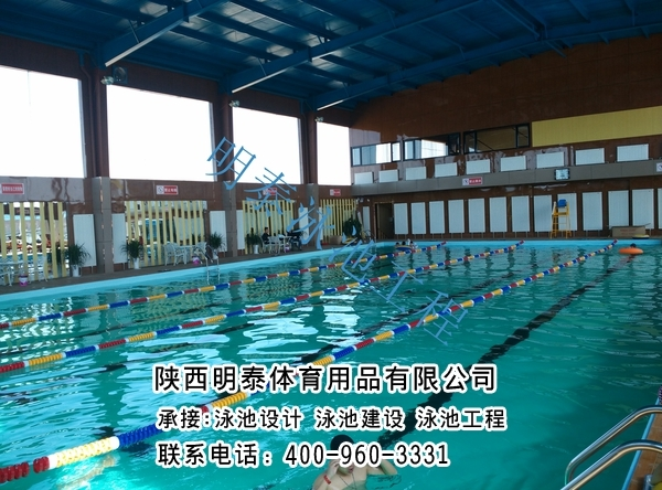 中衛標準游泳池