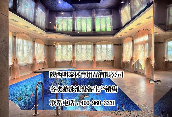 泳池净水设备