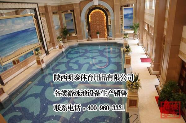 西安游泳池水处理设备