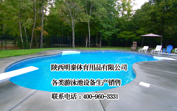 安康游泳池消毒设备