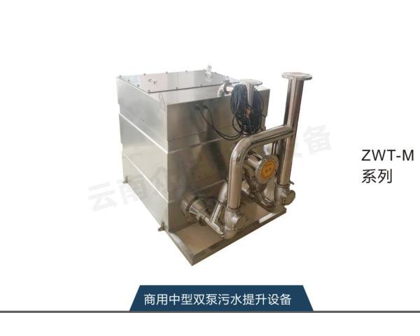 商用中型雙泵污水提升設備