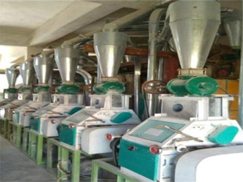 日处理30吨面粉加工设备