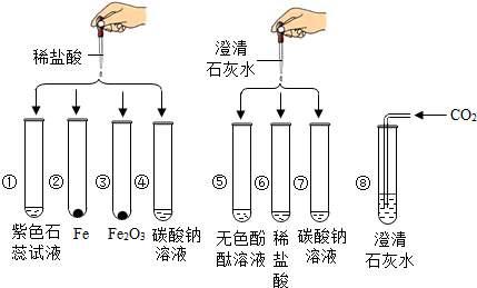 氢氧化钙的化学性质