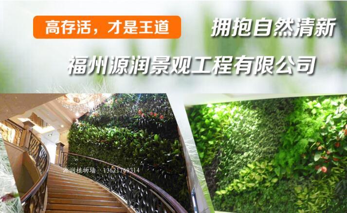 福州庭院设计选择富海360做企业网络推广方案