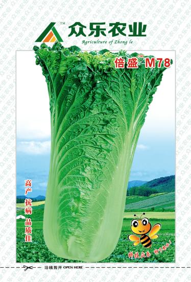 云南蔬菜种子批发