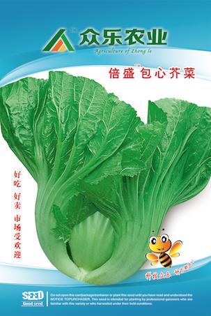 倍盛包心芥菜 10g/袋