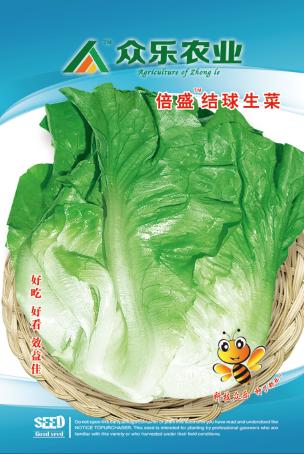 倍盛结球生菜 10g/袋