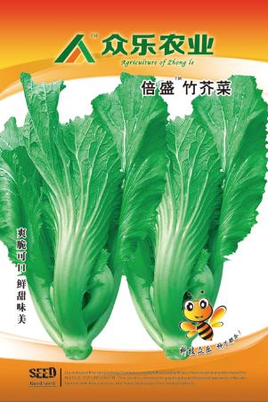 倍盛竹芥菜 10g/袋