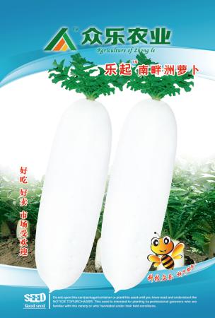 乐起南畔洲萝卜  10g/袋