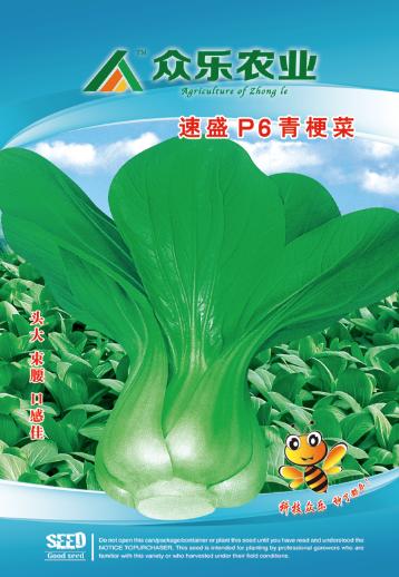 速迈P6青梗菜  10g/袋