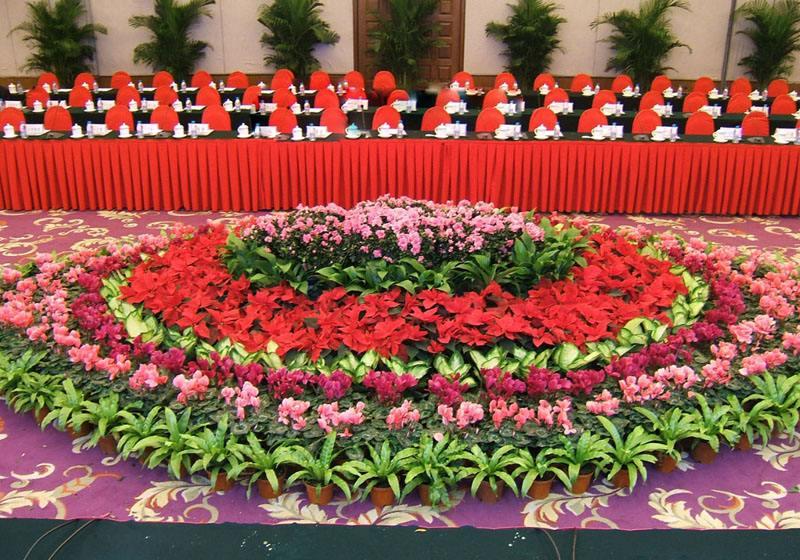 绿植花卉租赁的场合都有哪些比较适用呢?
