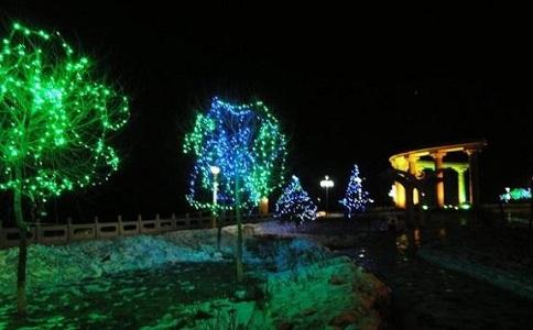 云南园林景观照明工程对植物的细致要求