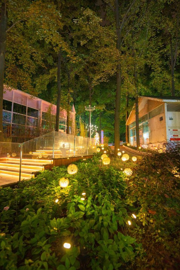 武汉磨山欢乐丛林夜游亮化正式上新