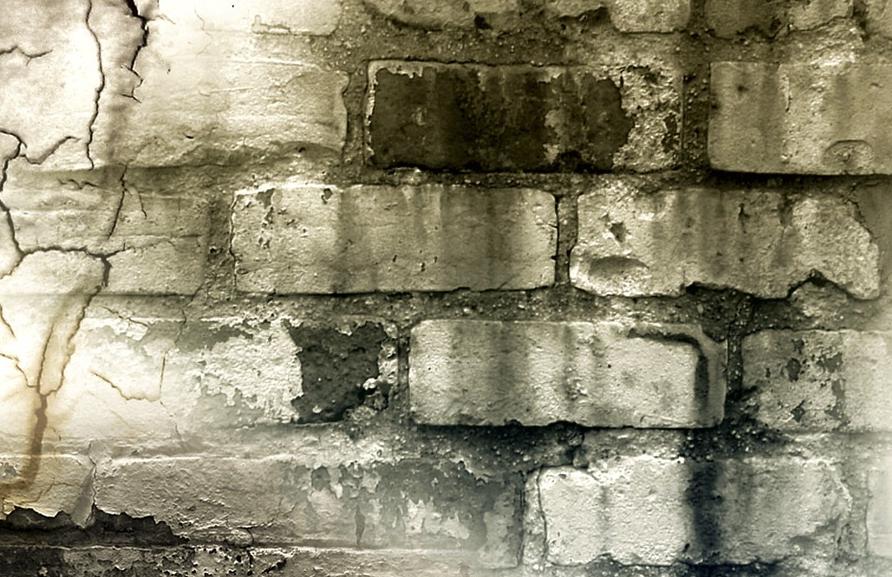 怎样购买一台好的水泥免烧砖设备,应注意什么?