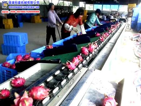 台湾统农吉农牌TN-68-1水果电脑重量分级机