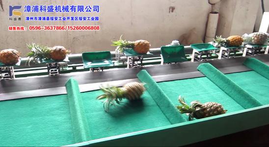 台湾统农吉农牌TN-65分选机