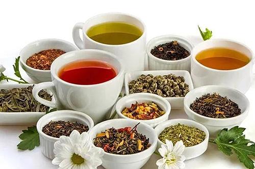 茶:自饮、送礼,该如何选择?