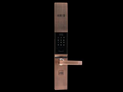 DSH6密码锁
