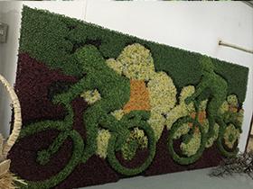 垂直绿化的好处有哪些?