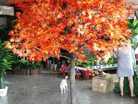 郑州仿真树