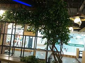 郑州仿真树公司